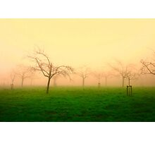 Morning Fog  - JUSTART ©  Photographic Print