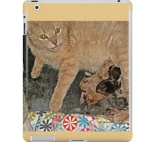Proud Mama Tells Me To Admire Her Kittens iPad Case/Skin