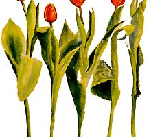 Five Tulips by closetpainter