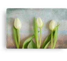 Tulips - JUSTART ©  Canvas Print