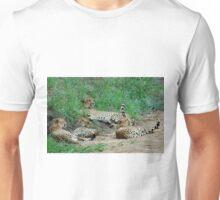 TAILS UP, OBSERVING! - CHEETAH – Acinonyx jabatus – Die Jagluiperd Unisex T-Shirt