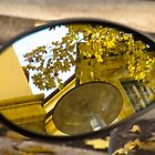 Peeking through the leaves, Bolzano/Bozen, Italy by L Lee McIntyre