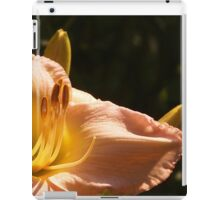 Lily and Buds iPad Case/Skin