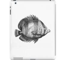 Findows 10  iPad Case/Skin