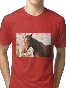 Horse in the paddock Tri-blend T-Shirt