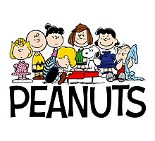 The Complete Peanuts Photographic Print
