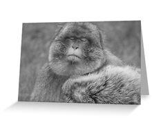 Had enough monkey Greeting Card