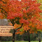 Autumn Haiku by Kathleen Hamilton