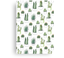watercolour cacti and succulents Canvas Print