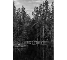 Peaceful afternoon Photographic Print