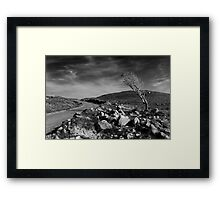 Islay: The Survivor Framed Print
