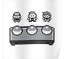 Starter Pokemon Poster