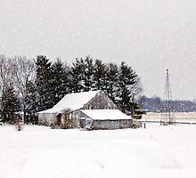 Snowy day down on the farm by Grinch/R. Pross