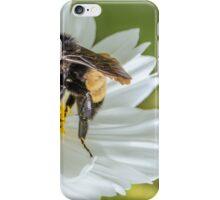 Bee 3 iPhone Case/Skin