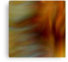 The Color of Desire Canvas Print