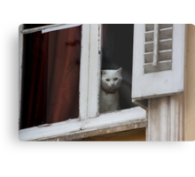 When are you coming home ?  - JUSTART  © Metal Print