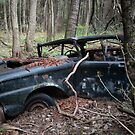 Vintage car in the woods by jrier
