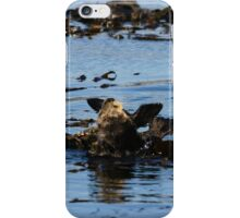 PACIFIC SEA OTTERS iPhone Case/Skin