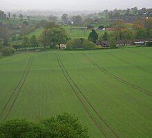 Wiltshire Landscape by RedHillDigital