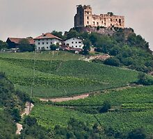 Schloss (Castle) Rafenstein ruins, Bolzano/Bozen, Italy by L Lee McIntyre