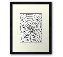 The Spider's Web Framed Print
