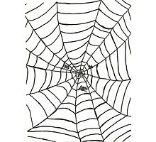 The Spider's Web Photographic Print
