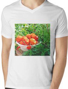 Garden Goodies Mens V-Neck T-Shirt