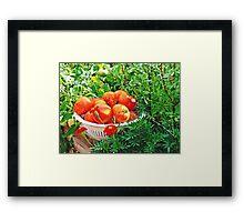 Garden Goodies Framed Print