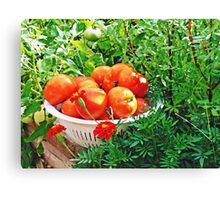Garden Goodies Canvas Print