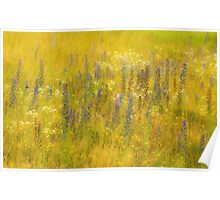 Meadow Bouquet Poster