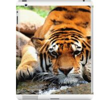 bored tiger iPad Case/Skin