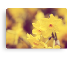 Happy Spring - JUSTART © Canvas Print