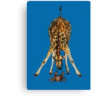 Curiosity killed the cat, not the giraffe Canvas Print