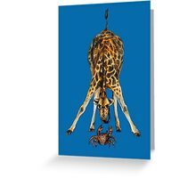 Curiosity killed the cat, not the giraffe Greeting Card