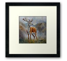 Prince Of The Glen (red stag) Framed Print