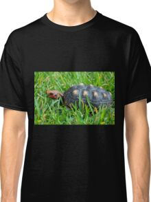 Red-footed Tortoise II Classic T-Shirt
