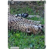 Sleeping Cheetah iPad Case/Skin