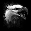 Eagle Eye by nicebleed