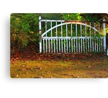 The Gate (Lomo Russian toy camera lens) Canvas Print