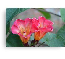 Wild Hawaiian Flower Canvas Print