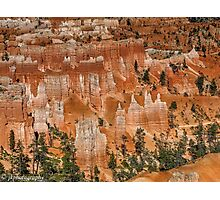 The Hoodoos of Bryce Canyon  Photographic Print