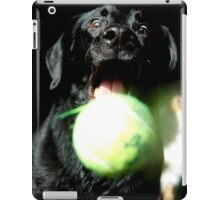 Doing What They Do iPad Case/Skin