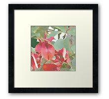 Orchid Tree of Uruguay # redbubble Framed Print