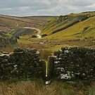 The Narrow Stile by Kat Simmons