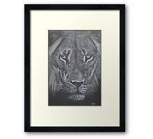 The Proud Lion Framed Print