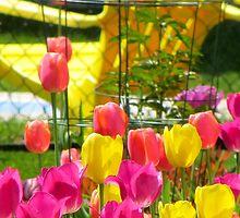 Tea & Tulips by Sandra Fortier