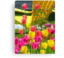 Tea & Tulips Canvas Print