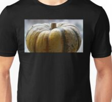Soft Focus Close-Up of a Small Light-Yellow Pumpkin Unisex T-Shirt