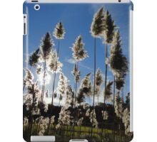 roadside beauties iPad Case/Skin