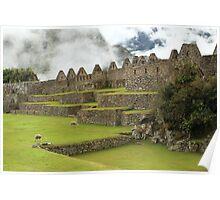 Machu Picchu, Peru Poster